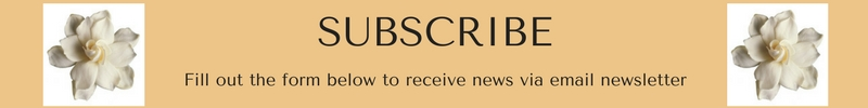 SUBSCRIBE EMAIL NEWSLETTER